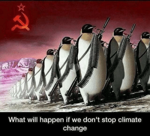 will happen: A  What will happen if we don't stop climate  change