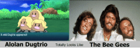 Dank, Facebook, and Meme: A wild Dugtrio appeared!  Alolan Dugtrio Totally Looks Like The Bee Gees Other than the hair colour, the resemblance is uncanny.  Take a look at the group page Pokemon GO's Dank Meme Stash, where I get inspiration for new material. https://www.facebook.com/groups/152229761865693/ -beforedawn