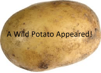 A wild Potato Appeared!