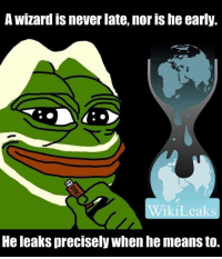 Memes, Never, and 🤖: A Wizard IS never late, nor IShe early.  ikiLeaks  He leakS precisely when he means to. IT'S GONNA HAPPEN, FOLKS!
