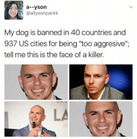 """Girl Memes, Dog, and Face: a--yson  @allysonparkk  My dog is banned in 40 countries and  937 US cities for being """"too aggresive"""",  tell me this is the face of a killer. 😂😂😂😂"""