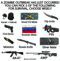 Memes, Ps4, and Xbox: A ZOMBIE OUTBREAK HAS JUST OCCURRED  YOU CAN PICK 3 OF THE FOLLOWING  FOR SURVIVAL, CHOOSE WISELY  Kevlar + Helmet  Good CS Mate  Flip Knife  @csgo memestar  Five-Seven  Russian Mate  P90  Molotov Bowie Knife  Silver Mate  AWP  @csgo memestar What you got? Follow me @jaxramse for daily content Check out @offensivememesz @gamiing.memes @gamersbanter @bitchyproblem @sacredxphoenix cod codmeme codmemes callofduty callofdutymeme callofdutymemes gfuel game infinitewarfare IW Rs6 rainbow6siege mwr gaming gamingmemes gamer battlefield battlefield1 gta gtav gta5 gtavonline bo2 bo3 csgo modding xbox xboxone ps4 pc
