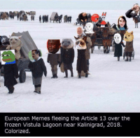 Frozen, Memes, and Article: A0  European Memes fleeing the Article 13 over the  frozen Vistula Lagoon near Kalinigrad, 2018.  Colorized Starting a GoFundMe to save these poor refugees!