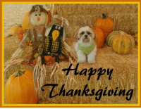 I wish you all a very special Thanksgiving!!! #ThisIsHowIRoll #Kalo #Thanksgiving: AA  Happy  Thanksgiving I wish you all a very special Thanksgiving!!! #ThisIsHowIRoll #Kalo #Thanksgiving