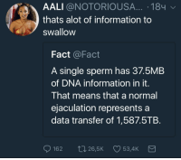 Blackpeopletwitter, Too Much, and Information: AALI @NOTORIOUSA... .184  thats alot of information to  swallow  Fact @Fact  A single sperm has 37.5MB  of DNA information in it.  That means that a normal  ejaculation represents a  data transfer of 1,587.5TB.  162  265K  534K <p>That&rsquo;s way too much information to swallow. (via /r/BlackPeopleTwitter)</p>
