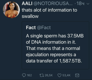 Too Much, Information, and Single: AALI @NOTORIOUSA... .184  thats alot of information to  swallow  Fact @Fact  A single sperm has 37.5MB  of DNA information in it.  That means that a normal  ejaculation represents a  data transfer of 1,587.5TB.  162  265K  534K Thats way too much information to swallow.