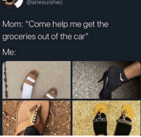 """help me: aanesuished  Mom: """"Come help me get the  groceries out of the car"""