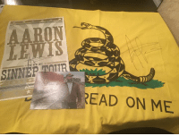 I meet Aaron Lewis last night and he signed my Gadsden flag!  I'm framing this.: AARON  Evira  SINNEPTATR  READ ON ME  01 or I meet Aaron Lewis last night and he signed my Gadsden flag!  I'm framing this.