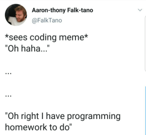 "Happens every time: Aaron-thony Falk-tano  @FalkTano  *sees coding meme*  ""Oh haha...""  ""Oh right I have programming  homework to do"" Happens every time"