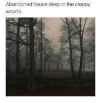 Can somebody please tell me why I can see on this page who reads my dm but on my other page it doesn't show read receipts???: Abandoned house deep in the creepy  woods Can somebody please tell me why I can see on this page who reads my dm but on my other page it doesn't show read receipts???