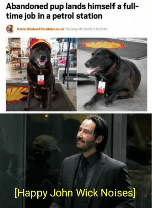 You're breathtaking: Abandoned pup lands himself a full-  time job in a petrol station  Hattle Gladwell for Metro.co.uk Thursday 16 Feb 2017 905 am  Happy John Wick Noises] You're breathtaking