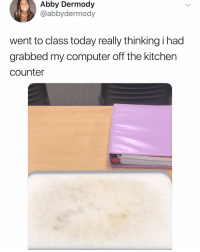 Memes, Computer, and Today: Abby Dermody  @abbydermody  went to class today really thinking i had  grabbed my computer off the kitchen  counter Jsnskssj she grabbed her cutting board