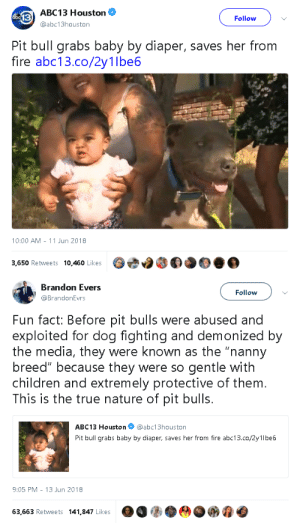 "Abc, Children, and Fire: ABC 13 Houston  @abc13houston  Follow  Pit bull grabs baby by diaper, saves her from  fire abc13.co/2y1lbe6  10:00 AM-11 Jun 2018  3,650 Retweets 10,460 Likes   Brandon Evers  @BrandonEvrs  Follow  Fun fact: Before pit bulls were abused and  exploited for dog fighting and demonized by  the media, they were known as the ""nanny  breed"" because they were so gentle with  children and extremely protective of them.  This is the true nature of pit bulls.  ABC13 Houston@abc13houston  Pit bull grabs baby by diaper, saves her from fire abc13.co/2y1lbe6  9:05 PM -13 Jun 2018  63,663 Retweets 141,847 Likes a gahdamnpunk:Pitbulls are precious. People who dedicate their lives to hunting them down and killing them deserve to die"