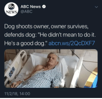"Abc, Memes, and News: abc ABC News  NEWS  @ABC  Dog shoots owner, owner survives,  defends dog: ""He didn't mean to do it  He's a good dog."" abcn.ws/2QcDXF7  11/2/18, 14:00 https://t.co/qEeqF3xaIP"