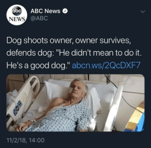 """Good Dog: abc  ABC News  NEWS @ABC  Dog shoots owner, owner survives,  defends dog: """"He didn't mean to do it.  He's a good dog."""" abcn.ws/2QCDXF7  11/2/18, 14:00  BEcez"""