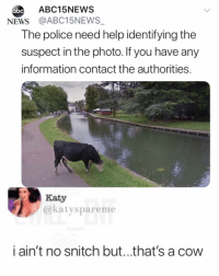 Abc, Memes, and News: abc  ABC15NEWS  NEWS @ABC15NEWS  The police need help identifying the  suspect in the photo. If you have any  information contact the authorities  Katy  @katyspareme  i ain't no snitch but...that's a cow 😂WTH