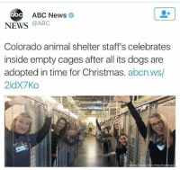 Abc, Christmas, and Dank: ABC News  abc  NEWS @ABC  Colorado animal shelter staff's celebrates  inside empty cages after all its dogs are  adopted in time for Christmas. abcn.ws/  2idx7Ко  of the Pkes