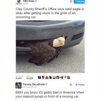 Abc, Confused, and Internet: ABC News  ABC News  Following  NEWS  @ABC  Clay County Sheriff's Office says bald eagle is  okay after getting stuck in the grille of an  oncoming car  8.433  15,829  Timothy DeLaGhetto  Follow  OTimothyDeLaG  SMH you know it's gettin bad in America when  your mascot jumps in front of a moving car Not trying to be political, but I just wanted to make sure everyone is aware that today is NOT Obama's last day in office. From what I've seen on the internet, people seem to think that today is his last day in office. Like mentioned before, I'm not trying to be political just trying to alleviate confusion and clear the air. -Em