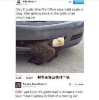 Abc, Chill, and Memes: ABC News  Following  NEWS  @ABC  Clay County Sheriff's Office says bald eagle is  okay after getting stuck in the grille of an  oncoming car  8,433  15,829  Timothy DeLaGhetto  Follow  OTimothyDetaG  SMH you know it's gettin bad in America when  your mascot jumps in front of a moving car @fcukalike has no chill rihpost america sendhelp