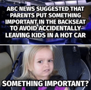 Abc, News, and Parents: ABC NEWS SUGGESTED THAT  PARENTS PUT SOMETHING  IMPORTANT,IN THE BACKSEAT  TO AVOID ACCIDENTALLY  LEAVING KIDS IN A HOT CAR  SOMETHING IMPORTANT? Something important