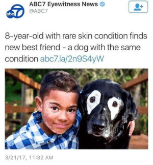 We all need a friend. via /r/wholesomememes https://ift.tt/2KR1Q3D: ABC7 Eyewitness News  @ABC7  abc  8-year-old with rare skin condition finds  new best friend - a dog with the same  condition abc7.la/2n9S4yW  3/21/17, 11:32 AM We all need a friend. via /r/wholesomememes https://ift.tt/2KR1Q3D