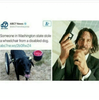 Destiny, Friends, and Funny: ABC7 News  @abc7newsbayarea  BAY AREA  Someone in Washington state stole  a wheelchair from a disabled dog  abc7ne.ws/2bORwZ4 SWIPE LEFT!!! Follow 🙉 @monkeynapkin 👀 💥Tag Your Friends💥 🌟YouTube: Monkey Napkin🌟 🔥Subscribe🔥 👍 cod relatable codmemes callofduty callofdutymeme callofdutymemes funnymeme love overwatch Hoodhumor tagsomeone trump destiny gaming gamingmemes comedy battlefield dailymemes gta gtav gta5 gtavonline bo2 bo3 monkeynapkin funnymemes funny hoodmemes dankmeme csgomemes