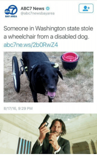 News, Abc7, and Bay Area: ABC7 News  @abc7newsbayarea  BAY AREA  Someone in Washington state stole  a wheelchair from a disabled dog  abc7ne ws/2bORwZ4  8/17/16, 9:29 PM