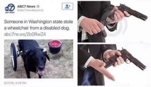 Dank, Memes, and News: ABC7 News  eabc7newsbayarea  DAY AREA  Someone in Washington state stole  a wheelchair from a disabled dog.  abc7ne.ws/2bORwZ4  8/17/16, 9 20 PM Meirl by rJohn420 MORE MEMES