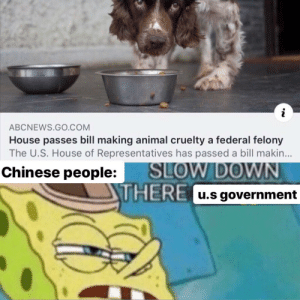 termination is inevitable: ABCNEWS.GO.COM  House passes bill making animal cruelty a federal felony  The U.S. House of Representatives has passed a bill makin...  SLOW DOWN  THERE u.s government  Chinese people: termination is inevitable