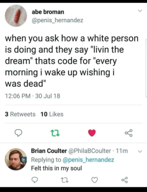 "True, Tumblr, and Blog: abe broman  @penis_hernandez  when you ask how a white person  is doing and they say ""livin the  dream"" thats code for ""every  morning i wake up wishing i  was dead""  12:06 PM 30 Jul 18  3 Retweets 10 Likes  Brian Coulter @PhilaBCoulter 11m  Replying to @penis_hernandez  Felt this in my soul srsfunny:That's true…"