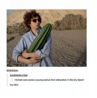 Goals, Michael Cera, and Tumblr: abishdreya:  breakfastburritoe:  michael cera saves a young cactus from dehyration in the dry desert  my hero goals 😩💦