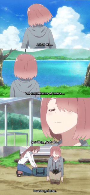 Anime, Fresh, and Home: Ablue sky...  The magnificence of nature...  Sparkling, fresh air..  I wanna go home. Anime_irl