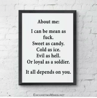 Memes, 🤖, and Net: About me  I can be mean as  fuck.  Sweet as candy.  Cold as ice.  Evil as hell.  Or loyal as a soldier.  It all depends on you.  ENCHANTINGMINDs.NET