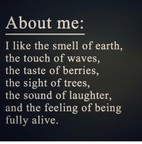 Alive, Memes, and Smell: About me  I like the smell of earth,  the touch of waves,  the taste of berries,  the sight of trees,  the sound of laughter,  and the feeling of being  fully alive Yees 😍🙌🙏😊💙 Via the lovely @peace_love_light