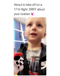 Shit, Flight, and Girl Memes: About to take off on a  17 hr flight. SRRY about  your ovaries THIS IS THE CUTEST SHIT EVER via: @kait.davis