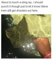 Bruh, Chill, and Dank: About to touch a stingray...I should  punch it though just to let it know Steve  Irwin still got shooters out here Real shit ——————————————————————————————————————— My other accounts: @themememonk @memedoctor_ ————————————————————— mememonkmememonk mememonk bruh lmao hood meme chill nochill comedy pepe l4l ghetto dank dankmeme dankmemes memes lmfao triggered dank filthyfrank itslit lit realniggahours petty lol funny prank bestmemes bestmeme