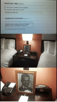 """Alfonso Ribeiro, Animals, and Memes: About your stay (optional)  The room I wanted was unavailable  Traveling with service animal  Service animals only  Additional Comments (optional)  The hotel staff cannot guarantee additional requests  Please place a framed picture of Alfonso  Ribeiro on the nightstand. Thank you  You have 47 remaining characters <p>I'd stay there via /r/memes <a href=""""http://ift.tt/2yLR1J5"""">http://ift.tt/2yLR1J5</a></p>"""