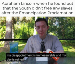 Abraham Lincoln, Abraham, and Free: Abraham Lincoln when he found out  that the South didn't free any slaves  after the Emancipation Proclamation  my disappointment is immeasurable and my  day is ruined