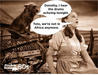 Memes, Usa Today, and 🤖: Absolut  Radi  Dorothy, I hear  the drums  echoing tonight.  Toto, we're not in  Africa anymore. Toto's 'Africa' was No.1 in the USA today in 1983. It was a No.3 hit in the UK!