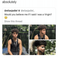 Ebaumsworld, Funny, and Meme: absolutely  @eliasjadiel W @eliasjadiel_  Would you believe me if I said I was a Virgin?  Show this thread Jump into the meme stream and enjoy! #memes #funny #pics #ebaumsworld