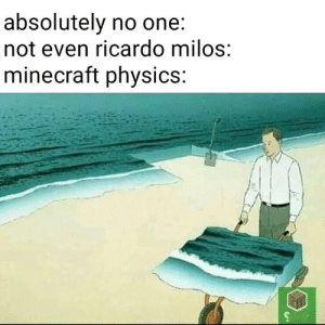 8Gaming: absolutely no one.  not even ricardo milos  minecraft physics: 8Gaming
