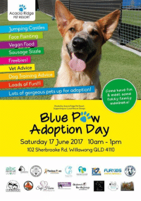 Advice, Family, and Food: Acacia Ridge  PET RESORT  jumping Castles  Face Painting  Vegan Food  Sausage Sizzle  Freebies!  Vet Advice  Dog Training Advice  Loads of Fun!!!  Lots of gorgeous pets up for adoption!  Come have fun  & meet some  fuRRy family  membeRs!  Hosted by Acacia Ridge het Resort  our Loool Rescue oroups  Blue P ew  Adoption Day  Saturday 17 June 2017 10am 1pm  102 Sherbrooke Rd, Willawong QLD 4110  FURIOS  Precious Paws  ERIN START Don't forget we will be at 💙🐾🐶Blue Paw Adoption Day 🐱🐾💙 at Acacia Ridge Pet Resort, 102 Sherbrooke Rd, Willawong on this Saturday 17th June, 10am to 1pm. Come and have some fun and meet some of our foster pets up for adoption! #bluepawadoptionday #acaciaridgepetresort