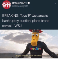 Memes, Toys R Us, and Bankruptcy: Acar Breaking911  BREAKING  @Breaking911  BREAKING: Toys 'R' Us cancels  bankruptcy auction; plans brand  revival - WSJ  @NationOfBagles  As you can see, I am not dead 😂They're back