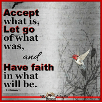 Accept What Is
