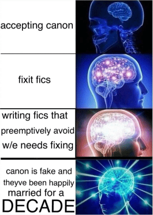 Fake, Target, and Tumblr: accepting canon  fixit fics  writing fics that  preemptively avoid  w/e needs fixing  canon is fake and  theyve been happily  married for a  DECADE whatisthisnonsense: hermannsgayhands: i made this for the discord but its important You forgot a step