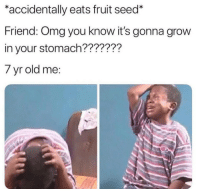 "Memes, Omg, and Old: *accidentally eats fruit seed*  Friend: Omg you know it's gonna grow  in your stomach???????  7 yr old me: <p>Oh no I'm in trouble via /r/memes <a href=""https://ift.tt/2saM62a"">https://ift.tt/2saM62a</a></p>"