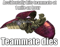 Halo, Memes, and 🤖: Accidentally hits teammateat  1 mile amhour  @PoarSaurusRex  Teammate Basically Halo CE Co-op campaign.. Follow me for more! (@PolarSaurusRex)