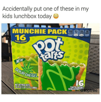 Kids, Today, and Tree: Accidentally put one of these in my  kids lunchbox today  MUNCHIE PACK  116  ter pastries  cannabis  pastries  FROSTED  IG  NET WT/PESONETO  28202 1 LB122 0Z) (800g)  tree Would y'all try these?! 😳 https://t.co/eKOb5T0tDp