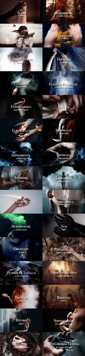 ibuzoo:  Harry Potter A-Z challenge: ozzzymandius vs. ibuzoo S - Spells : AccIo  ALOHOMORA  friendly to thieves  action  CONFUNDO  to confuse  AVIS  bird  CONJUNCTIVITIS  puns ye  DIFFINDO  to divide   EXPECTO PATRONUM  Tawait my protector  EVANESCO  disappearing  EXPELLIARMUS  expel the weapon  FERULA  splin  IMMOBULUS  2 итогable  FURUNGULUS  boil   IMPEDIMENTA  MPERVIUS  impassable  a hindrance  INCENDIO  I set fire  LEGILIMENS  to read a mind  LUMOS  light  MOBILIARBUS  to move a tree   MORSMORDRE  to bite death  Nox  night  ORCHIDEOUS  to betar an vrehid  OBLIVIATE  forget  PRIOR INCANTANTO  the previous spell  PETRIFICUS TOTALUS  to become stone   PROTEGO  Iprotect  REDUCTO  destroy  REPARO  SERPENSORTIA  the source of a snake  repair  STUPEFY  to pur into a stupor  WINGARDIUM LEVIOSA  fly high to the light ibuzoo:  Harry Potter A-Z challenge: ozzzymandius vs. ibuzoo S - Spells