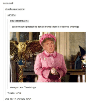 It just works so well: accio-salt  skepticalporcupine:  sarlione:  skepticalporcupine  can someone photoshop donald trump's face on dolores umbridge  Here you are: Trumbridge  THANK YOU  OH. MY. FUCKING. GOD It just works so well